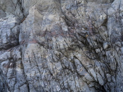 rock layers Immersed in an Ancient Forest: The California Redwoods- contemporary photography series by Lincoln Schatz