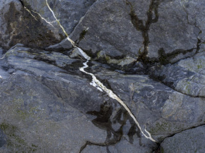 quartz streak in rock Immersed in an Ancient Forest: The California Redwoods- contemporary photography series by Lincoln Schatz